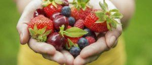 Nova Abordagem: A Relação do colesterol e as Doenças Cardiovasculares (DCV)