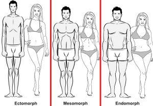 Os 3 Biótipos: Ectomorfo, Mesomorfo e Endomorfo