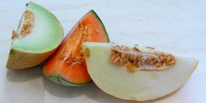 Meloa ou Melão?