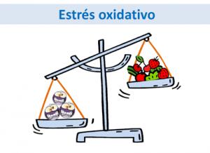 Juventude e Stress Oxidativo